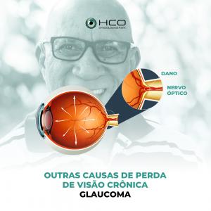 Outras causas de Perda de Visão Crônica - Glaucoma